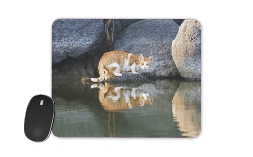 tapis de souris Cat Reflection in Pond Water