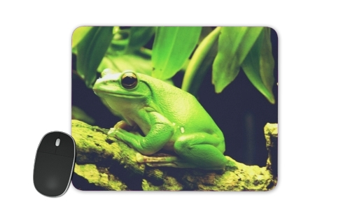 tappetino Green Frog