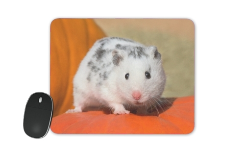tappetino White Dalmatian Hamster with black spots
