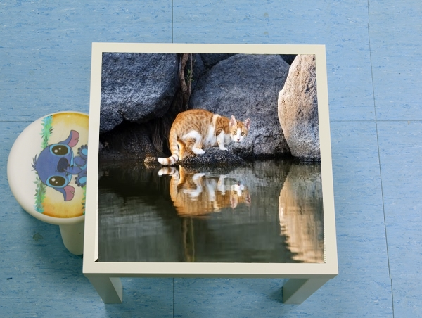 table d'appoint Cat Reflection in Pond Water