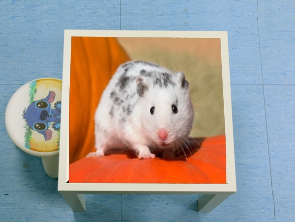 table d'appoint White Dalmatian Hamster with black spots