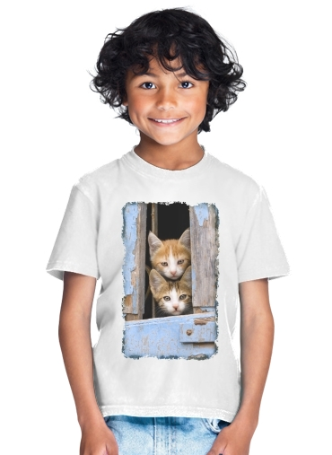 tshirt enfant Cute curious kittens in an old window