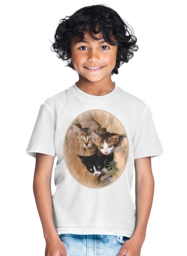 tshirt enfant Three cute kittens in a wall hole