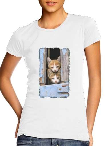 Tshirt Cute curious kittens in an old window femme