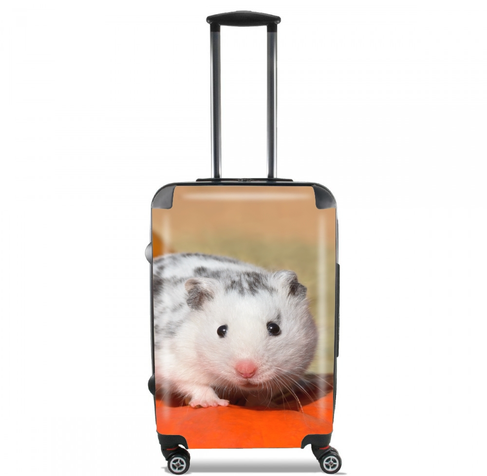 valise White Dalmatian Hamster with black spots